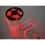 Banda cu led de interior cu banda adeziva (LTK-BND25) - www.lutek.ro