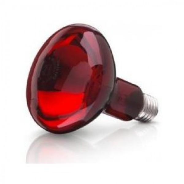 Bec infrarosu pentru cresterea pasarilor (helios) - www.lutek.ro